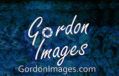 Gordon Images Photography